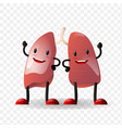 lungs human internal organ realistic character vector image