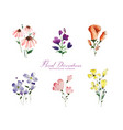 set isolated cute watercolor flowers elements vector image