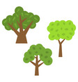 three green trees with leaves vector image vector image