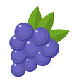 grapes icon flat style vector image