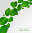 Abstract green spring leaves background vector image