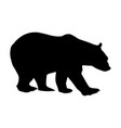 bear silhouette isolated vector image vector image