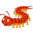 cartoon centipede isolated on white background vector image vector image