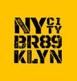 district of new york brooklyn vector image