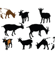 goats collection - vector image vector image
