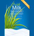 Milk package template vector image