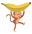 monkey with playful face and banana cartoon icon vector image vector image
