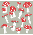Poisonus mushrooms isolated vector image