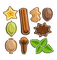 set icons for culinary spices vector image vector image