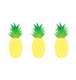 set of pineapples exotic fruit vector image vector image