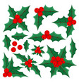 set with holly leaves and berries vector image