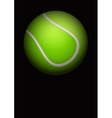 Dark Background of tennis ball vector image vector image