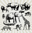 exotic animals vector image vector image