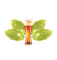 hop plant and elegant glass of beer 3d icon vector image vector image