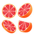 set of grapefruit slices isolated on white vector image vector image