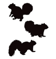 squirrel silhouettes vector image vector image