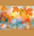 autumn colorful background with leaves and vector image vector image