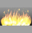 burning fire isolated fire flame special light vector image