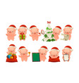 collection of happy cute christmas pig isolated vector image