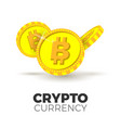 cryptocurrency concept vector image