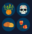 day dead set icons skull bread flowers vector image vector image