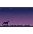 Deer run landscape at night silhouettes vector image
