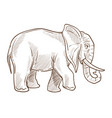 indian or african elephant isolated sketch wild vector image