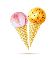Strawberry and orange ice cream in a waffle cone vector image vector image
