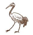 asian wild bird heron wader or stork isolated vector image vector image