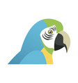 blue and yellow macaw parrot brazil vector image vector image