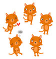 cute cats characters vector image