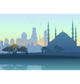 Istanbul Cityscape vector image vector image