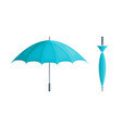 realistic detailed 3d blue umbrella set open and vector image vector image