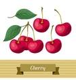 Set of various stylized cherries vector image