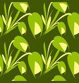 spring flowers and green tulips on a green vector image vector image