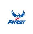 American Eagle Flying USA Flag Patriot Retro vector image