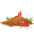 anthill in forest land vector image vector image