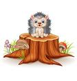 Cute baby hedgehog sitting on tree stump vector image vector image