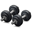 dumbbells cartoon icon isolated vector image