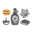 maple syrup set vector image vector image