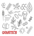 Agriculture and genetic technology sketch icons vector image