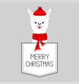 merry christmas llama alpaca animal dash line vector image