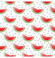 watermelon pieces seamless pattern vector image