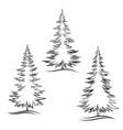 contour christmas trees vector image
