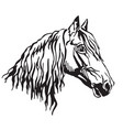 decorative portrait of orlov trotter horse vector image vector image