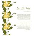 Delicate Dandelion flower vector image vector image