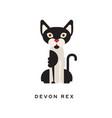 devon rex intelligent short-haired cat feline vector image vector image