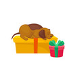 small puppy sleeping on yellow box christmas or vector image