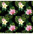 Tropical flowers pattern vector image
