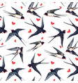 watercolor swallow pattern vector image vector image